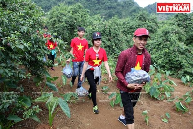 Fiesta de la cosecha de ciruelas en Moc Chau hinh anh 1