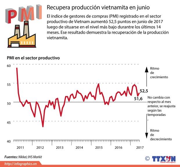 Produccion vietnamita reporta senales de recuperacion en junio hinh anh 1