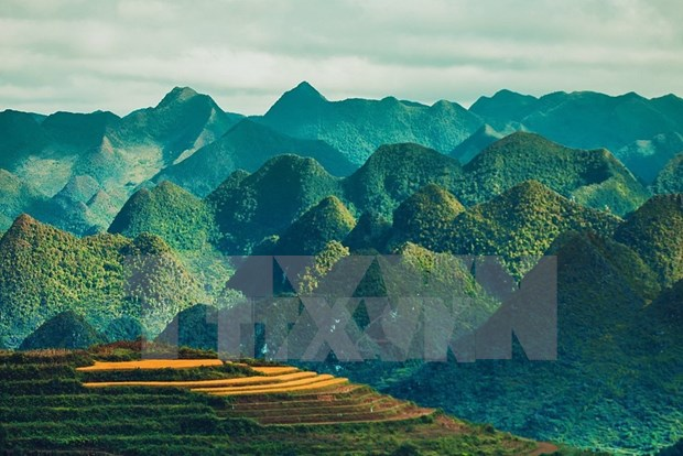 Paisajes majestuosos de zona montanosa de Ha Giang hinh anh 1