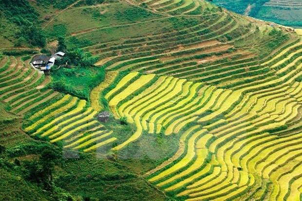 Paisajes majestuosos de zona montanosa de Ha Giang hinh anh 2
