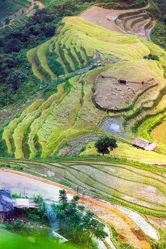 Paisajes majestuosos de zona montanosa de Ha Giang hinh anh 3