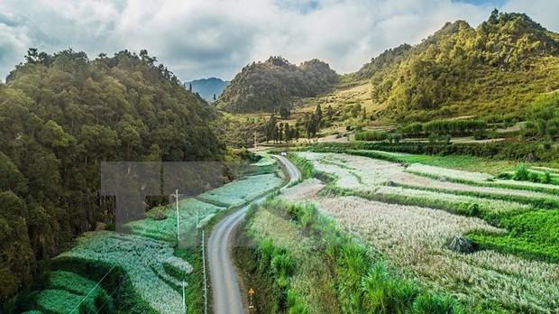 Paisajes majestuosos de zona montanosa de Ha Giang hinh anh 9