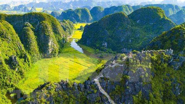 [Foto] Belleza de la temporada de cosecha de arroz en Ninh Binh hinh anh 4