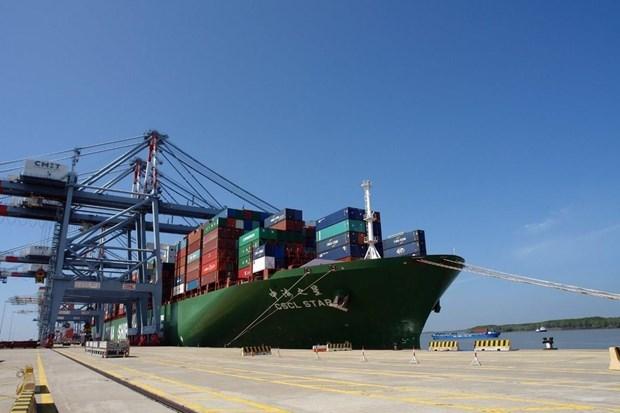 Vietnam aspira a promover potencialidades de empresas navieras nacionales hinh anh 2