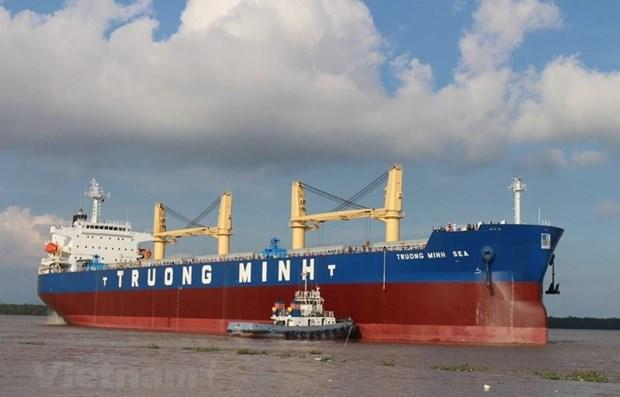 Vietnam aspira a promover potencialidades de empresas navieras nacionales hinh anh 1
