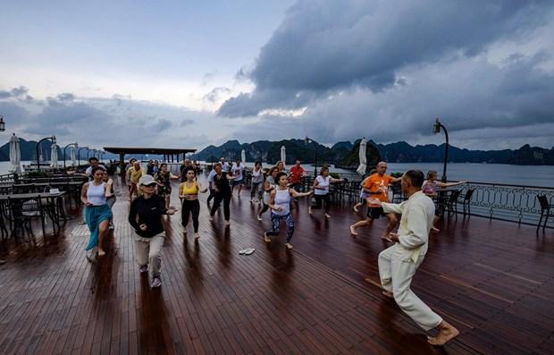 Esbozan en Vietnam planes para promocion del turismo hinh anh 1