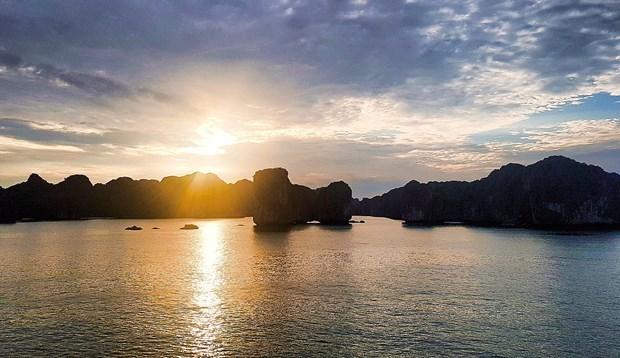 Proponen en Vietnam medidas para reactivar turismo post-COVID-19 hinh anh 5