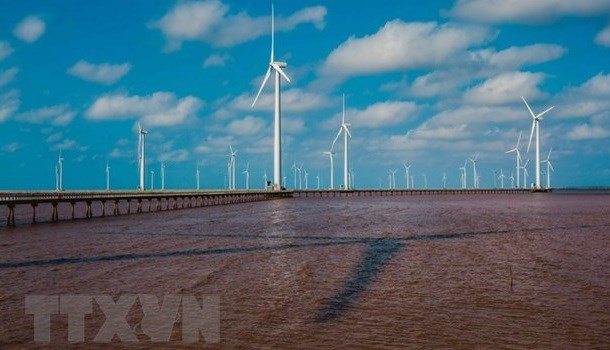 Provincia vietnamita de Bac Lieu prioriza desarrollo de energias renovables hinh anh 1