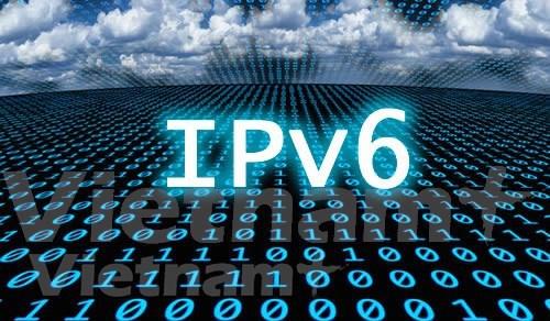 Vietnam ocupa el segundo lugar en el Sudeste Asiatico en tasa de uso de IPv6 hinh anh 1