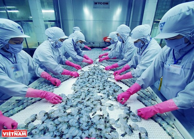 Vietnam apunta a ingresar cuatro mil millones de dolares por exportaciones de camaron hinh anh 2