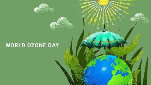 Vietnam se compromete a realizar acciones a favor de la capa de ozono hinh anh 1