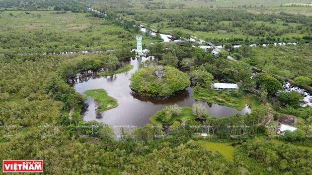 Fortalecen el turismo ecologico en Parque Nacional U Minh Thuong de Vietnam hinh anh 1