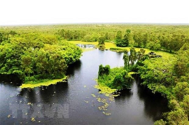 Fortalecen el turismo ecologico en Parque Nacional U Minh Thuong de Vietnam hinh anh 2