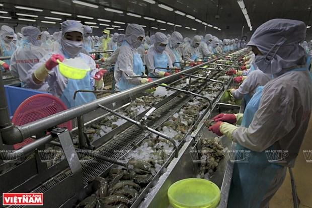Vietnam busca convertir al sector acuicola en un pilar economico hinh anh 1