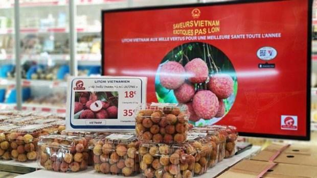 Comercio en linea allana camino para llevar productos vietnamitas al mundo hinh anh 1