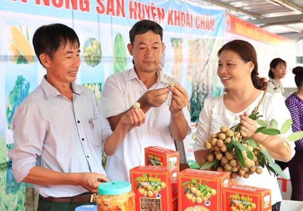 Comercio electronico: canal de promocion del longan vietnamita hinh anh 2