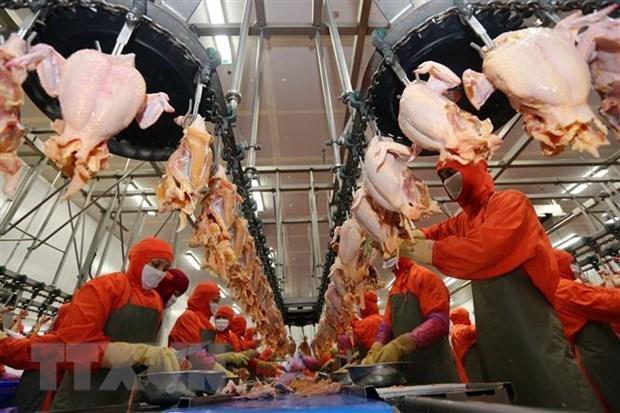 Mercado de alimentos y bebidas de Vietnam acapara gran interes de empresas extranjeras hinh anh 2