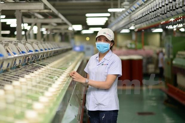 Empresas exportadoras de Vietnam gozan de ventajas brindadas por los TLC hinh anh 1