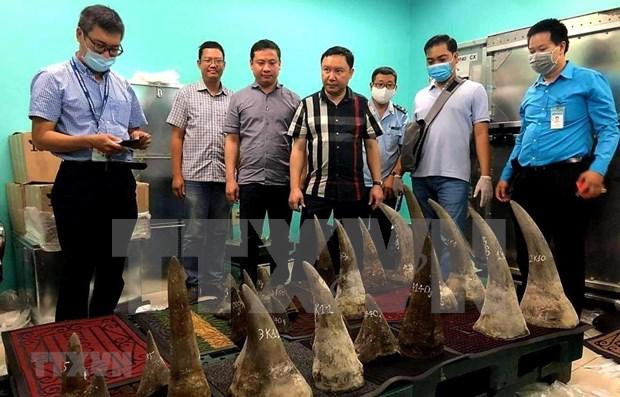Incautan 90 kilogramos de cuernos de rinocerontes en aeropuerto vietnamita hinh anh 1