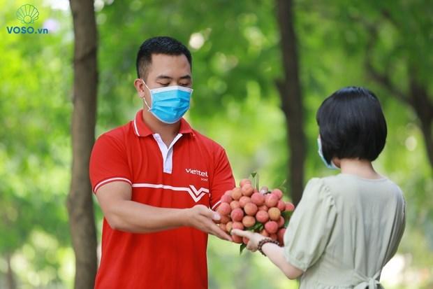 Impulsan venta de lichi en plataforma de e-comercio de Vietnam hinh anh 1