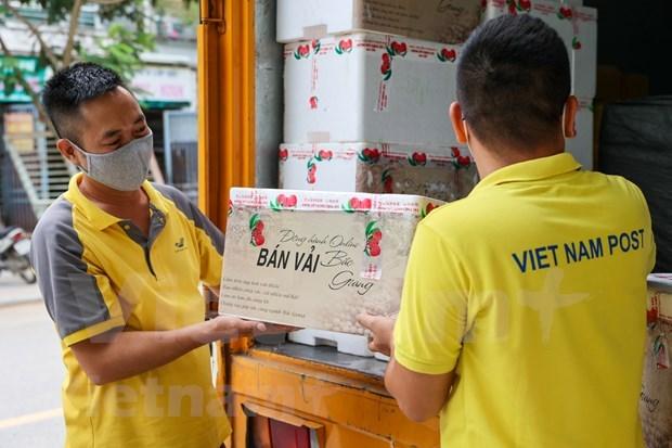 Impulsan venta de lichi en plataforma de e-comercio de Vietnam hinh anh 3