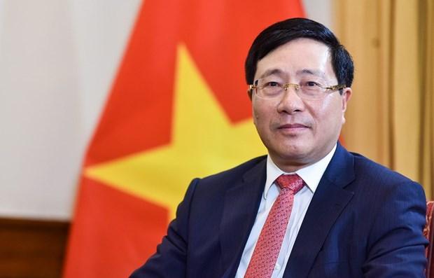 Exito de Vietnam en Mes presidencial de CSNU: impronta de un miembro responsable hinh anh 2