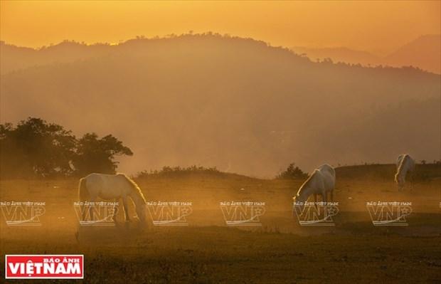 [Fotos] Region del Noroeste de Vietnam a traves de la camara de Nguyen Huu Thong hinh anh 1