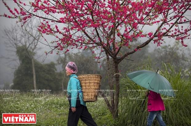 [Fotos] Region del Noroeste de Vietnam a traves de la camara de Nguyen Huu Thong hinh anh 12