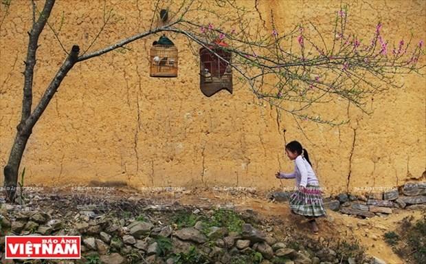 [Fotos] Region del Noroeste de Vietnam a traves de la camara de Nguyen Huu Thong hinh anh 13