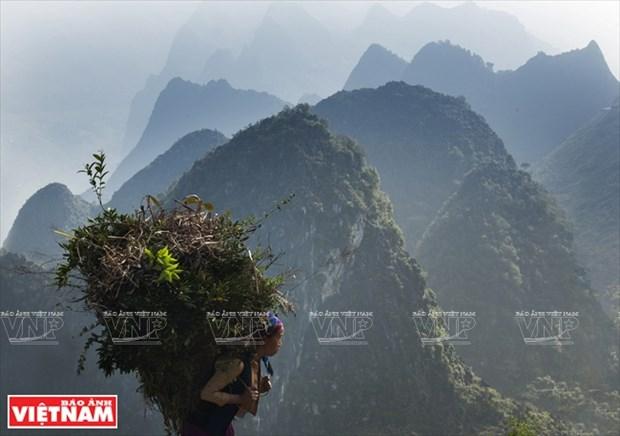 [Fotos] Region del Noroeste de Vietnam a traves de la camara de Nguyen Huu Thong hinh anh 14