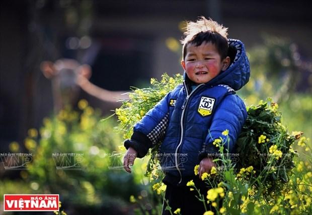 [Fotos] Region del Noroeste de Vietnam a traves de la camara de Nguyen Huu Thong hinh anh 6
