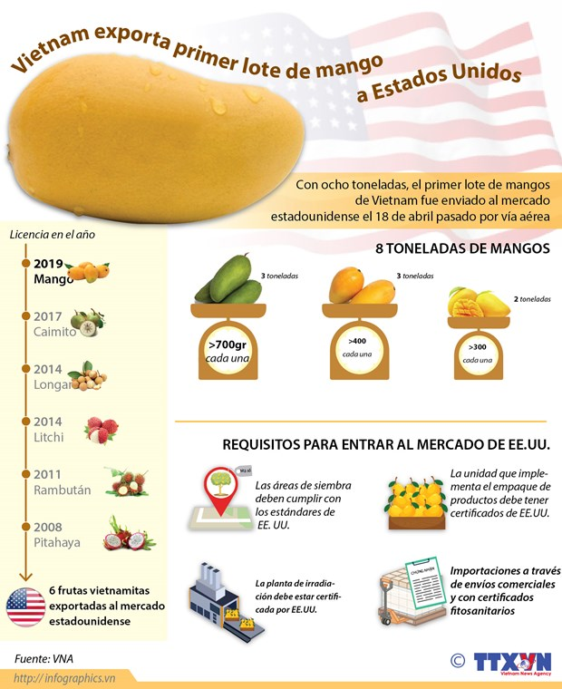 [Info] Vietnam exporta primer lote de mango a Estados Unidos hinh anh 1