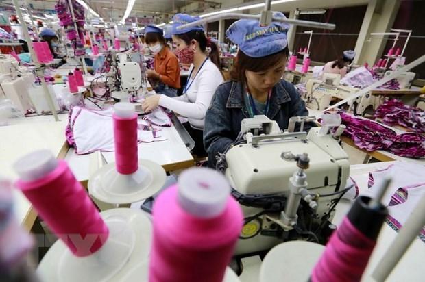 Comercio de Vietnam tras 13 anos de integrarse a la OMC hinh anh 1
