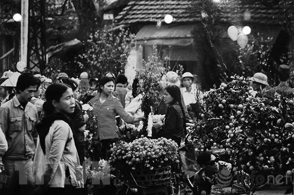 [Foto] Tras la guerra, Vietnam supero las dificultades para la reconstruccion nacional bajo la direccion del Partido Comunista hinh anh 15