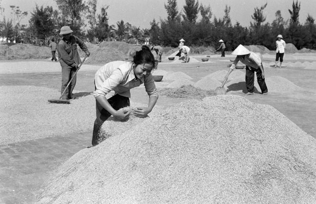 [Foto] Tras la guerra, Vietnam supero las dificultades para la reconstruccion nacional bajo la direccion del Partido Comunista hinh anh 20