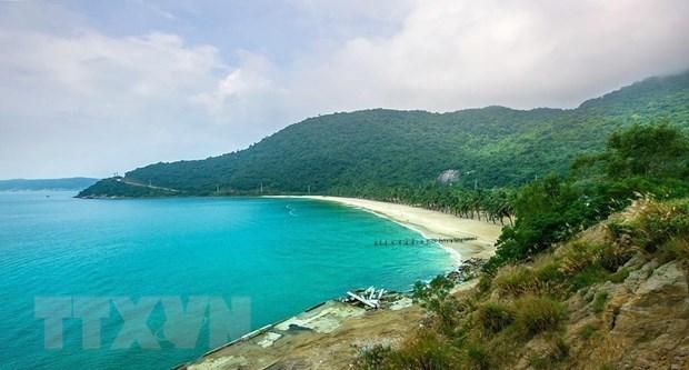Provincia vietnamita de Quang Nam promueve ecoturismo insular de forma sostenible hinh anh 1