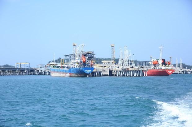 Corporacion petroquimica vietnamita apunta a mas de tres mil millones de dolares en ingresos hinh anh 1