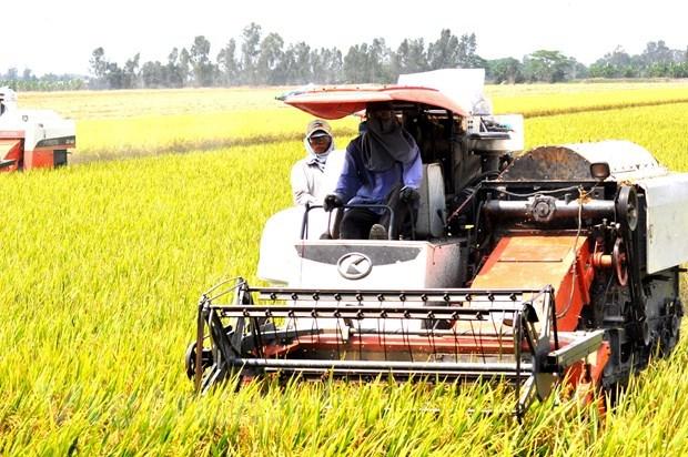 Aspira Vietnam a crecimiento economico de 6,5 por ciento en 2021 hinh anh 2