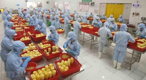Vietnam fortalece la atraccion de inversion extranjera directa hinh anh 2
