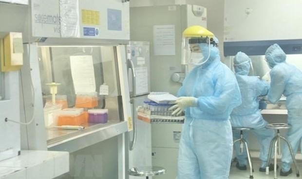 Instituto estadounidense destaca el exito de Vietnam al proteger la salud publica hinh anh 1