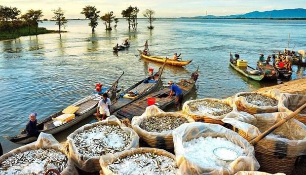 Turismo en el Delta del Mekong busca recuperarse en medio del COVID-19 hinh anh 1