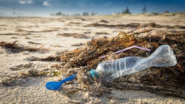 Vietnam: pionero global en disminucion de residuos plasticos en el oceano hinh anh 1