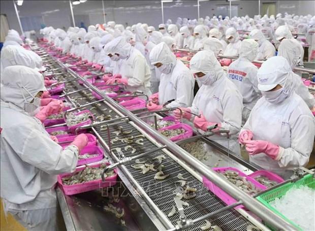Vietnam determina a poner fin a la pesca ilegal al final de 2021 hinh anh 2
