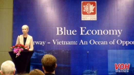 Vietnam y Noruega potencian la cooperacion en economia maritima hinh anh 1