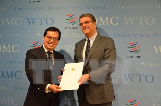 Elogia OMC logros socioeconomicos de Vietnam hinh anh 1