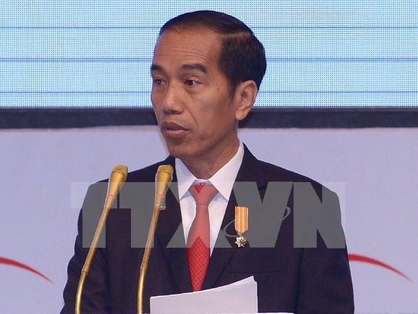 Presidente de Indonesia Joko Widodo visitara la India hinh anh 1