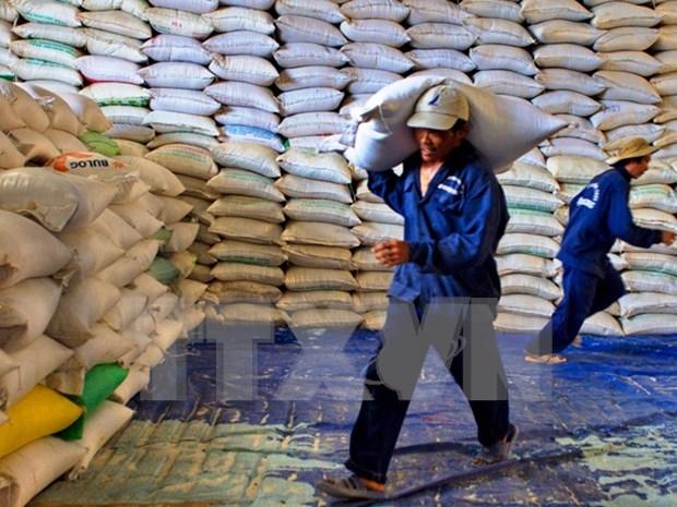 Fuerte reduccion de las exportaciones del arroz de Vietnam hinh anh 1