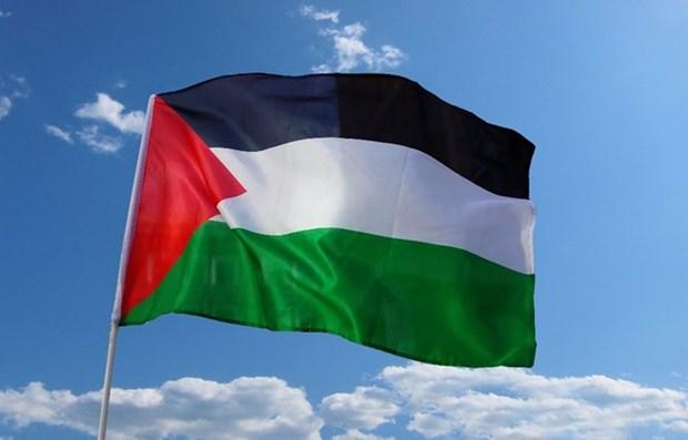 Vietnam afirma solidaridad con el pueblo de Palestina hinh anh 1