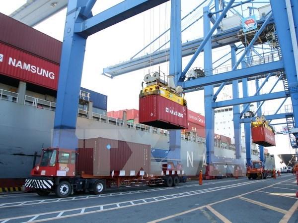 Puerto maritimo de Vietnam recibe el millonesimo contenedor hinh anh 1