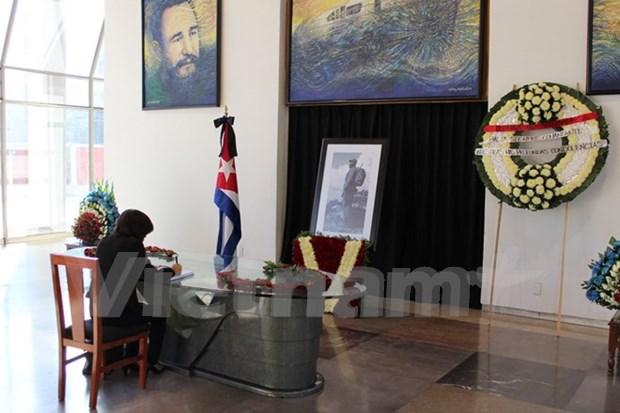 Vietnamitas en Mexico rinden tributo a Fidel Castro hinh anh 1